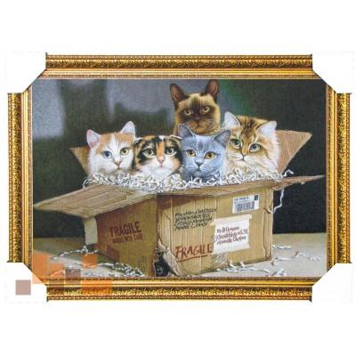 Коти в коробці 65*45 см